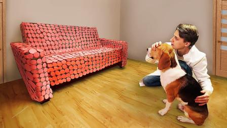 小伙拿200根香肠铺满沙发,看见狗子的反应,忍不住笑了!