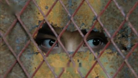穷小子被毒枭囚禁四年,天天偷学武功,越狱时已成为当世绝顶高手
