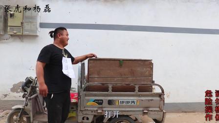 小伙扮成快递员,将朋友装进木箱当货物,一路飙车颠簸又刺激