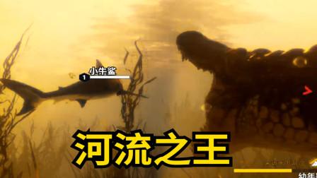 食人鲨:小鲨鱼在河流中捕食,遭到巨型鳄鱼追杀!
