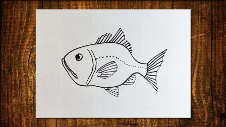 深海鱼1窦老师教画画