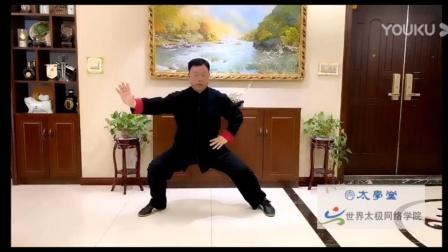 张东武陈式老架一路太学堂公开课2
