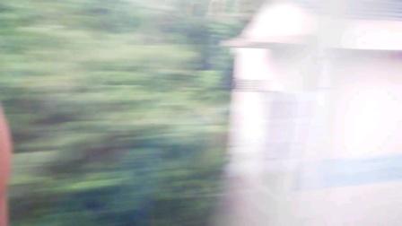 CRH380A-G1683次 遵义-厦门 南城1站台进站 和谐号南局福段