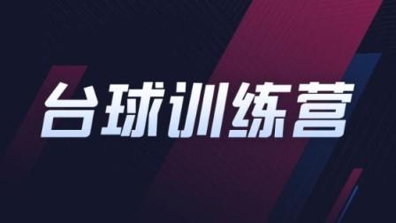 台球训练营-张镇辉台球教学