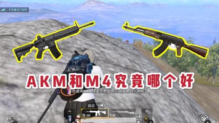 吃鸡中M416和AKM哪个好,你平常喜欢用哪个