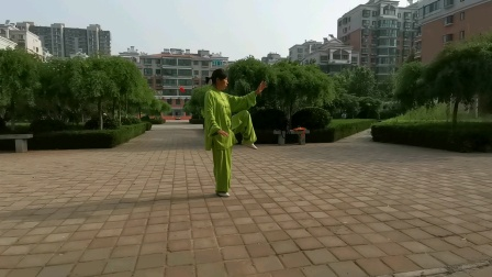 刘秀芝85势杨氏太极拳(五)