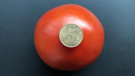 西红柿去皮别用开水烫了,原来用一枚硬币就搞定,这个方法太棒了