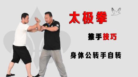 武术转的奥秘,精解到太极拳公转自转的理论,庞恒国老师精准讲述