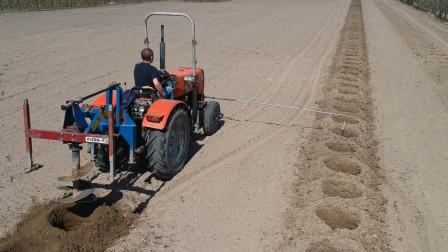 国外两三人就能种上百亩果园,看到种植过程,感叹科技真是好!