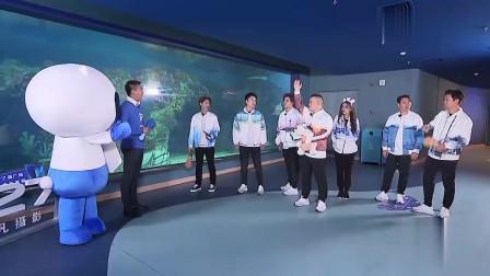 岳云鹏自告奋勇去鲨鱼池,迪丽热巴:还是不要去了,你肉多!