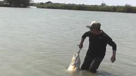 捕鱼:这是钓到一条什么鱼?一个鱼头都能吃一礼拜