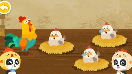 奇妙的动物家庭 公鸡还是母鸡会下蛋呢?