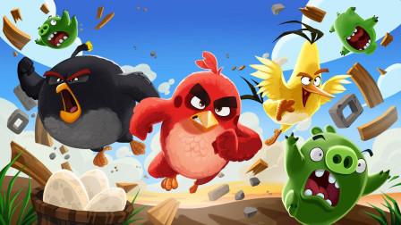 绿猪来到小鸟岛,阴谋得逞偷走鸟蛋,大红带领大家夺回鸟蛋