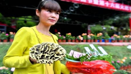 云南宜良:火把节评选干巴菌王 0.25公斤卖出2.2万元