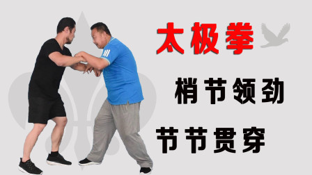 练习太极拳究竟是梢节领劲,还是节节贯穿?庞恒国师父2分钟分析