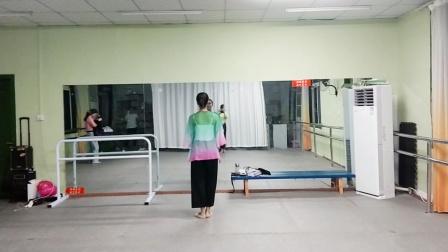 古典舞多情种视频分解动作七,阜阳艺路舞蹈提供