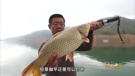 今天运气太好了, 大早上就钓到一条大鱼