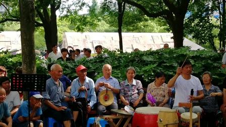 浦江县婺剧戏贾雨婷:在周日文化广场戏迷娱乐队演唱《洪苏秀》