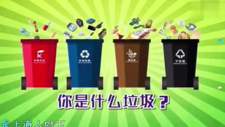 新一代垃圾分类好帮手,猪猪来也,一首新上海滩献给它!