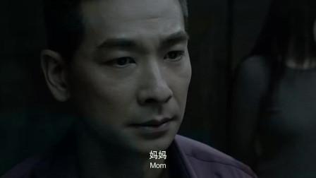 全城通缉:赵文卓把刘烨老婆整成秋瓷炫催眠犯罪,两人痛失所爱