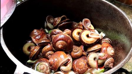 朋友从山上捡来这东西招待我,我分不清这是螺还是蜗牛!你认识吗?