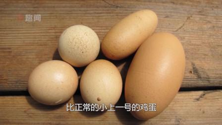 那些百年难得一见的事情,你见过长条形的鸡蛋吗?