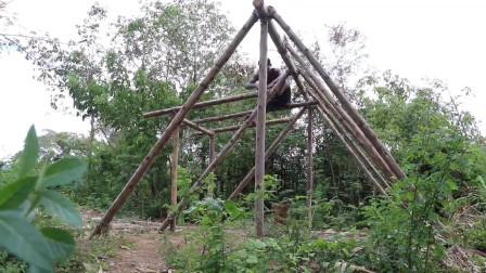 自从学了这盖房子的技能,大哥动不动就玩野外生存去了!这日子自在!