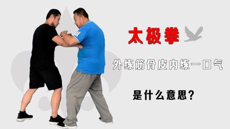 值得一看!太极拳庞恒国师傅揭秘:武术外练筋骨皮内练一口气