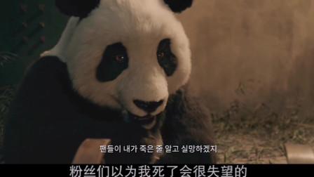 """熊猫特使""""明明""""到韩国后遭劫持,李星民面对狼犬的口水,让人笑翻!2"""