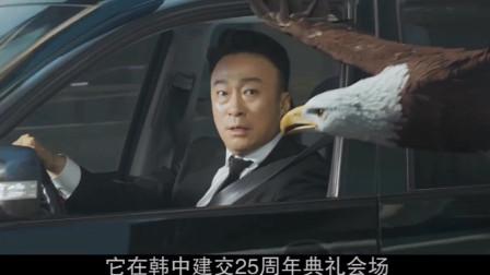 """熊猫特使""""明明""""到韩国后遭劫持,在动物们的帮助下,完成营救的喜剧!3"""
