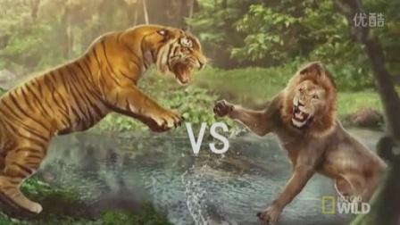 老虎vs狮子 五年前的牛刀小试.mp4