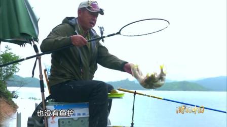 大鱼虽然没钓上多少, 但是小鱼还是钓到了不少!