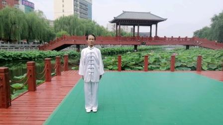 王金顺拳师练习的二十四式太极拳