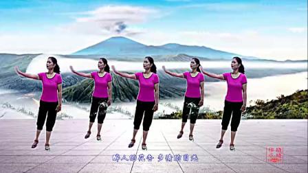 晓晓喜欢广场舞《为幸福歌唱》编舞花与影