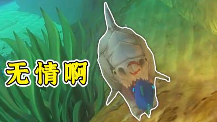海底大猎杀 没活过一口 悔不该招惹这条鱼