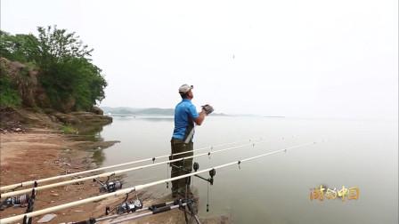 每个钓鱼人都有一个大鱼梦, 钓大鱼你准备好了吗?