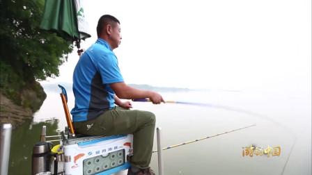 到赤东湖钓到的第一种鱼就是三角鲂, 运气真不错