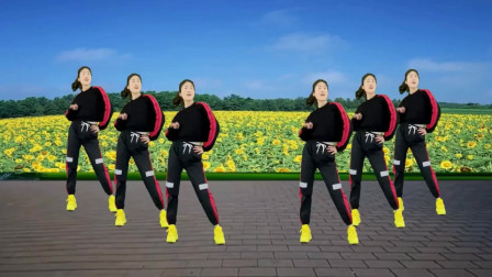 气质美女广场舞《冷风摇》早晚练习强身健体,轻松学会!