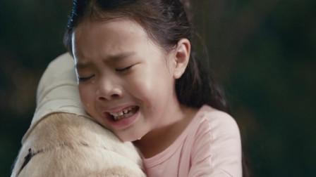 小狗奶瓶:狗狗以为被主人抛弃,每天寻找主人,最后却被撞成重伤