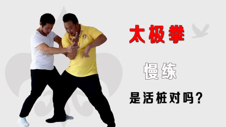 活桩?太极拳为什么要慢练?35秒告诉你武术核心