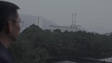 629淘宝吴晓波直播大秀