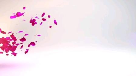 忍冬艳蔷薇短片