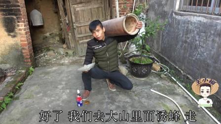 王小福教你诱蜂,摆放位置的挑选秘诀,快速引来侦查蜂