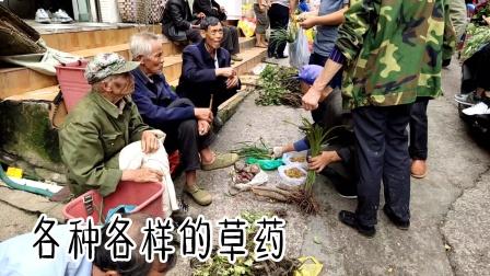 贵州省镇宁县的端午节卖草药