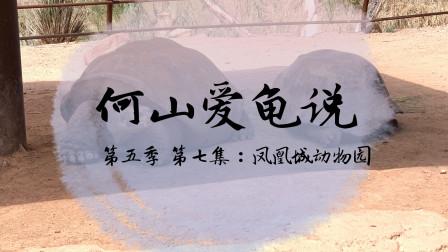 【何山爱龟说】第五季 第7集:凤凰城动物园