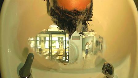 洗发妹天生异能,只要给别人洗头,能在水中看见别人内心所想!