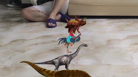 恐龙比赛鸡也来了