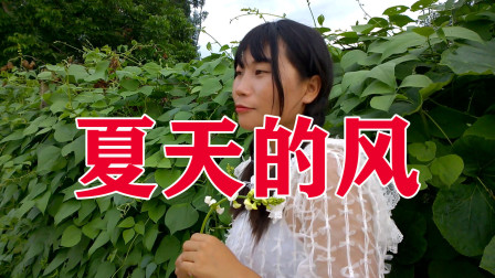 女歌手《夏天的风》超好听,嗓音真棒,只想整个夏天陪你环游世界