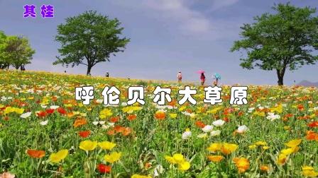 呼伦贝尔大草原(伴奏)