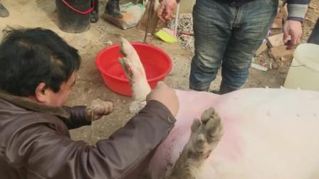 农村杀猪真省事省事,这样的杀猪方法你见过吗?